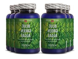Blue green algae powder bulk - BLUE GREEN ALGAE - improve mu