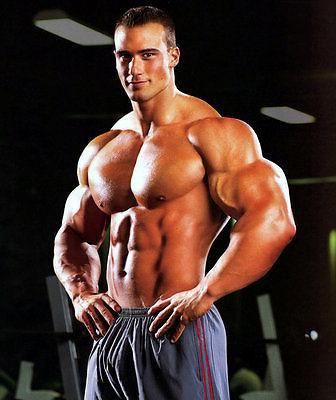 Muscle Growth Capsules Elk Antler 550mg 2B